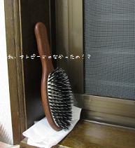 動物毛ブラシのお手入れ法